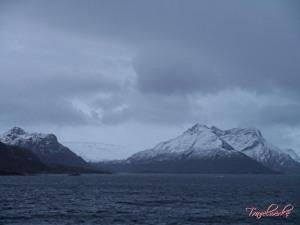 FMK_Landscape13