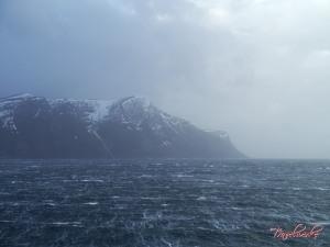 FMK_Landscape2