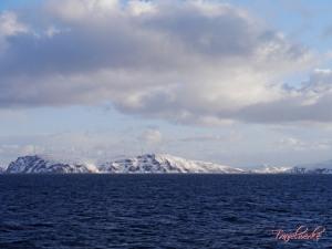 FMK_Landscape20