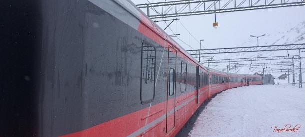 Bergensbanen_Exterior1