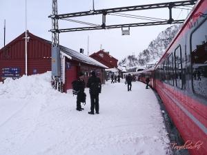 Bergensbanen_Route17
