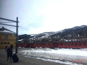 Bergensbanen_Route8