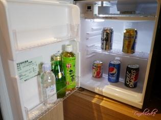 CY Osaka_Guestroom14